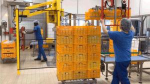 Une opératrice déplace trois caisses en plastique grâce au manipulateur Dalmec.