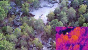 Vue du ciel de la forêt de Fontainebleau et de ses points chauds selon la caméra thermique embarquée dans le drone.