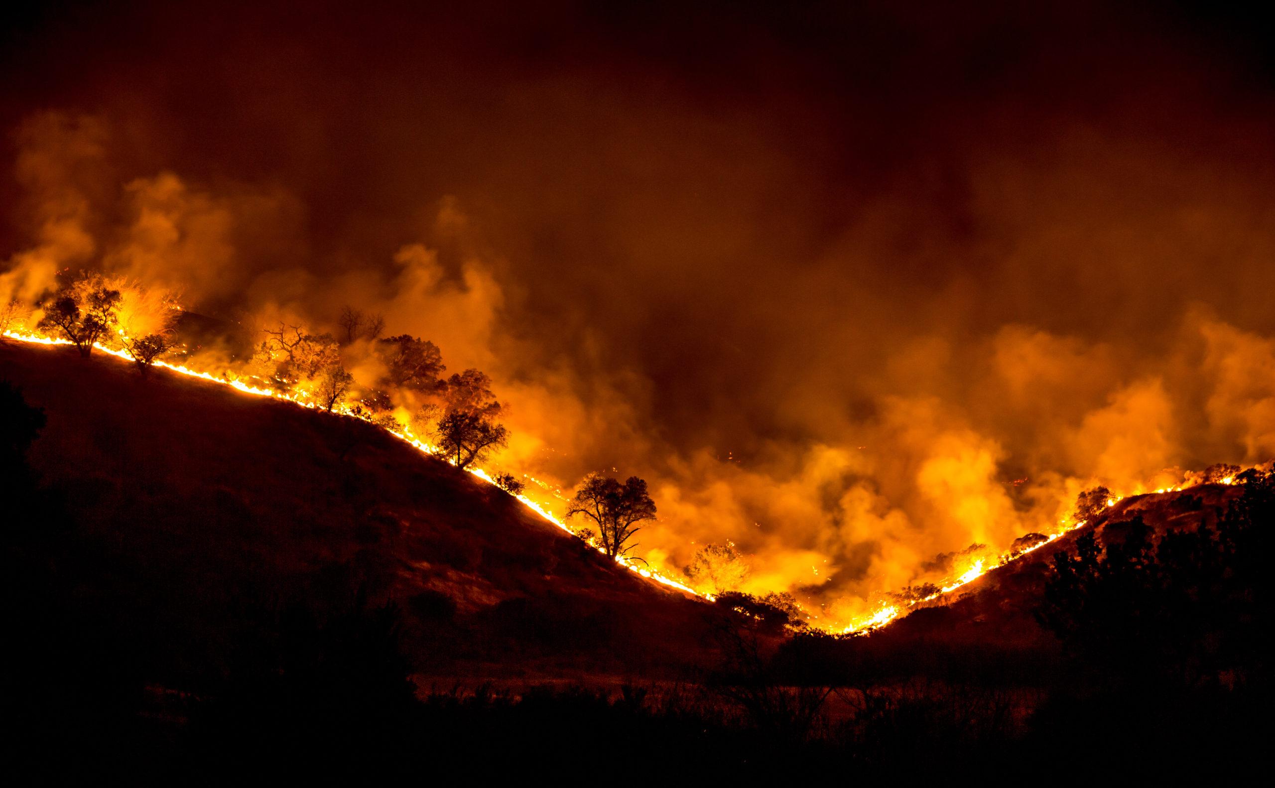 terribles-incendies-en-californie-l-ete-dernier.